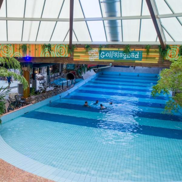 Landal Business Line het vennenbos Zwembad